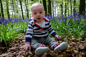 Bluebells Family Shoot Ashridge